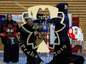 Pohár Sacuki 2019 & turnaj Sever vs Jih XII @ Sportovní centrum ČVUT Juliska, velká hala | Česko